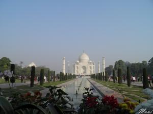 Taj....The flowery view