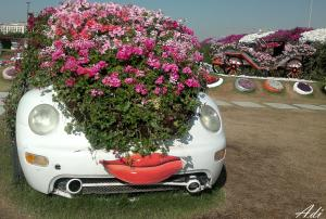 The Flowery Cars