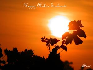 Happy Makar Sankranti - Copy